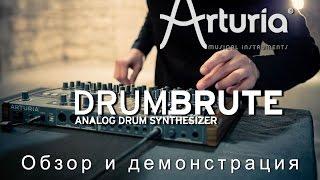Arturia DrumBrute - обзор