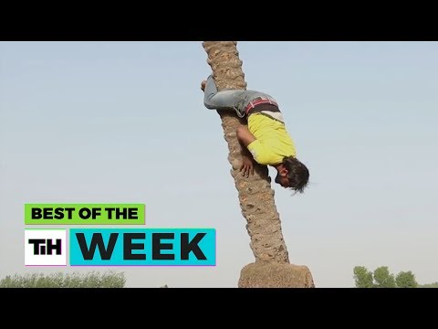 BEST OF THE WEEK: Going Up, Upside Down | This Is Happening