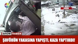 Şoförün yakasına yapıştı, kaza yaptırdı!