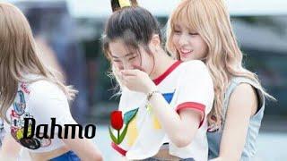 DAHMO | ❤🌷[ DAHYUN X MOMO ] 🌷❤ @Twice