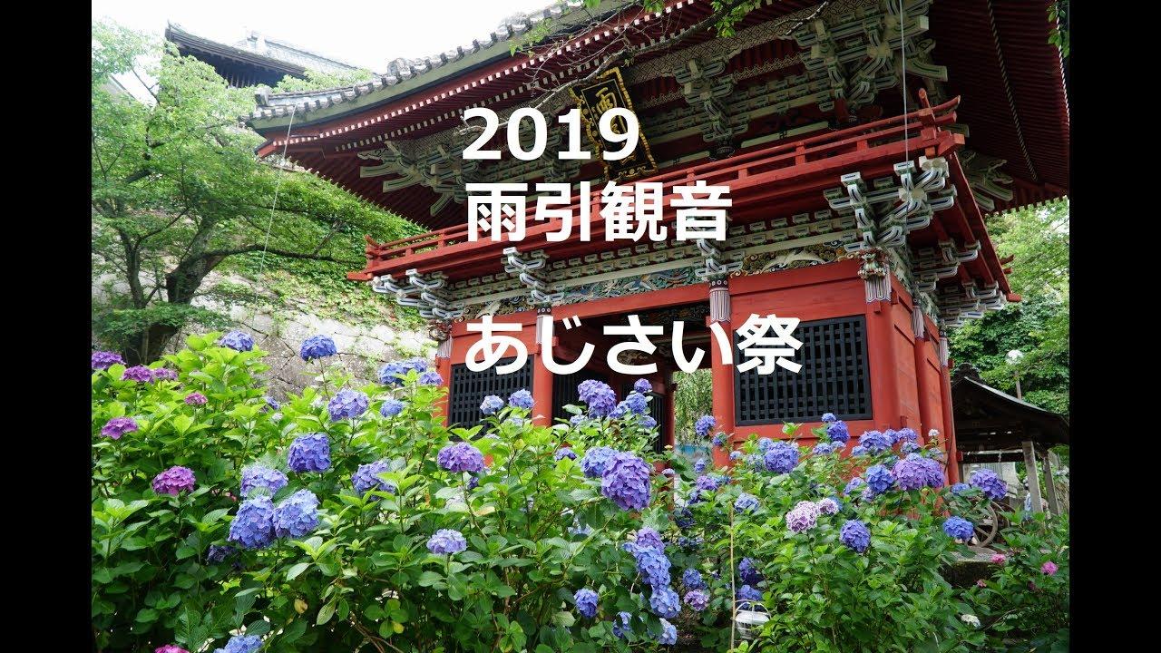 雨 引山 観音 あじさい 2019