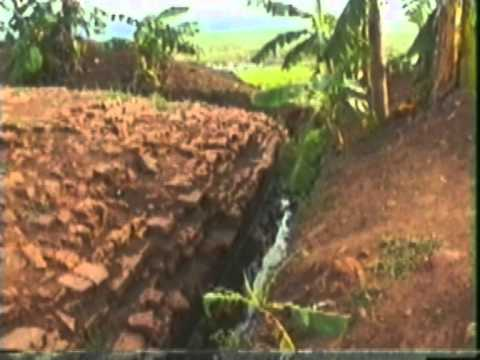 Dokumentasi awal pemugaran candi jiwa di Komplek Candi Batu Jaya Karawang 1 0f 2