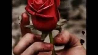 Memories of rose SID vtoyz
