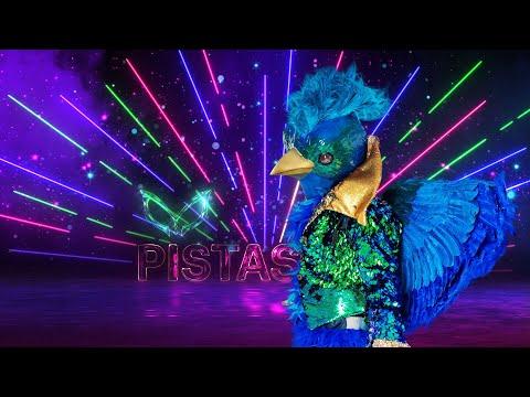 #QuetzalEs ¿Quetzal es hombre o mujer? | ¿Quién es la Máscara? 2020