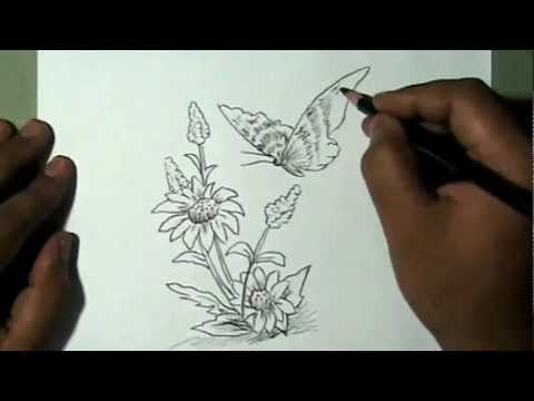How to draw beautiful flower and butterfly yzarts yzarts