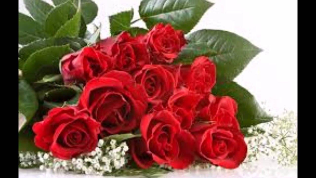 عيد ميلاد الورد Wmv Youtube