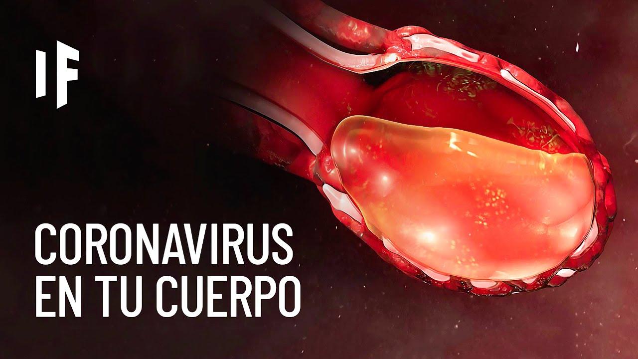 ¿Que le pasa a tu cuerpo si te contagias de coronavirus?