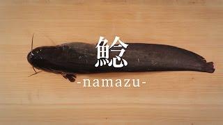 鯰(なまず)のさばき方 - How to filet Japanese Catfish -|日本さばけるプロジェクト thumbnail