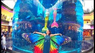 Les Sirènes et le Papillon Magique !