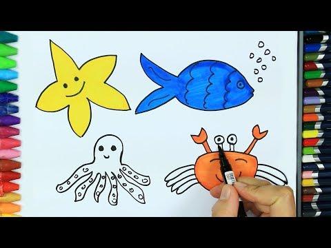 Deniz Hayvanlari Nasil Cizilir Cizim Nasil Yapilir
