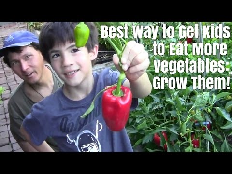 Best Way to Get Kids to Eat More Vegetables - Grow Them !