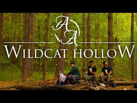 Wildcat Hollow 4K | Ohio Backpacking, Hiking And Camping In Wayne NF