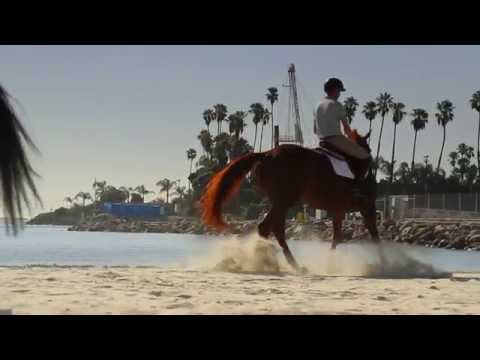 Interview with Silver Medallist Lucy Davis at the Longines Masters of Los Angeles 2016