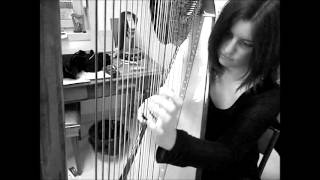 Bryan Adams - Sound The Bugle (2 HARPS COVER) ft. Shinterymi