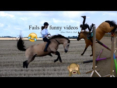 Funny Horse Fails