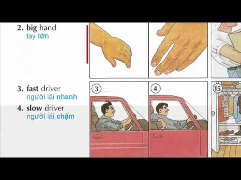 Oxford dictionary | Lesson 8 : Describing things | Learn English | Oxford picture dictionary