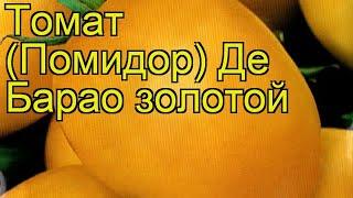 Томат Де Барао золотой. Краткий обзор, описание характеристик solánum lycopérsicum