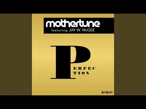Perfection (7inch Mix) (Feat. Jay W. McGee)