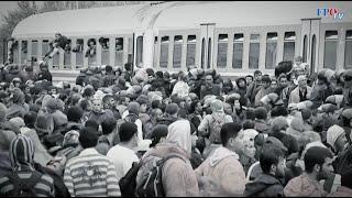 Wiederholt sich Asylchaos? FPÖ in der Regierung für effektiven Grenzschutz dringend erforderlich!