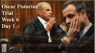 Oscar Pistorius Trial: Monday 14 April 2014, Session 1