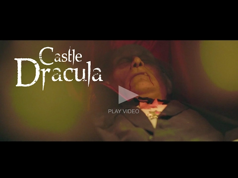 SILLYBILLY EVENTS - DUBLIN'S TOP ATTRACTION - CASTLE DRACULA!! (Over 14's Video)