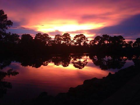 Port Charlotte Florida Community