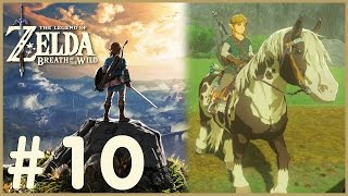 Zelda: Breath Of The Wild - I Got A Horse! (10)