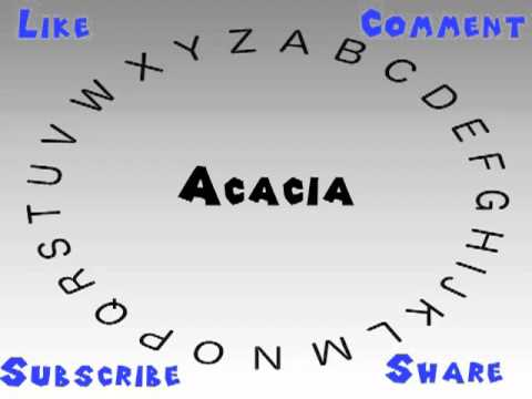 How To Say Or Ounce Acacia