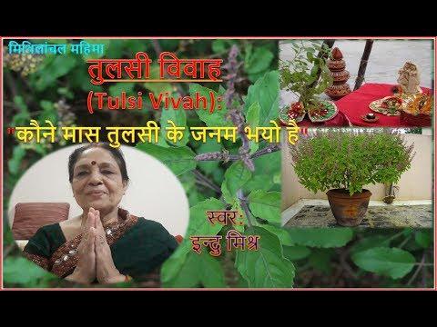 [tulasi-vivah]-तुलसी-विवाह---कौने-मास-तुलसी-के-जनम-भयो-है,-स्वर:-इन्दु-मिश्र-॥-mithilanchal॥मैथिली॥