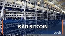 Đào Bitcoin là gì? | VTC1