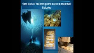 Coral history books: new chapters from Western Australian reefs