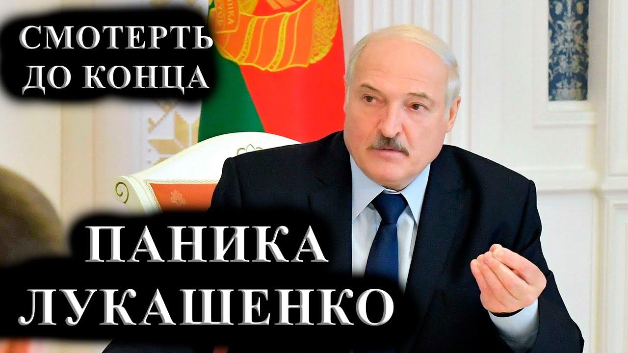 СРОЧНО Новости Беларуси Сегодня 2 декабря ПОСЛЕДНИЕ СОБЫТИЯ В БЕЛАРУСИ BELARUS NEWS Забастовка