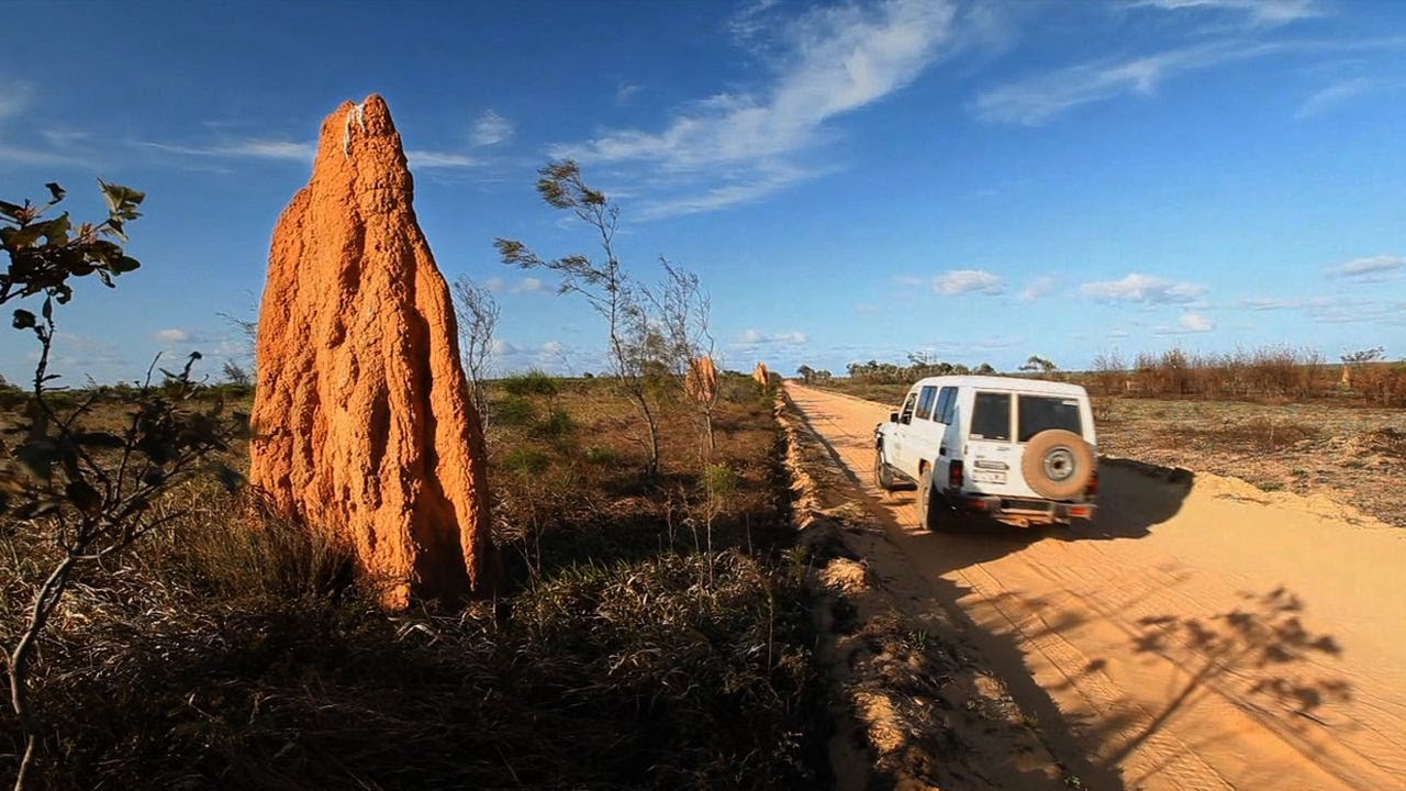 North Queensland Holiday Packages Cape York 4wd Travel Video Guide Far North Queensland Australia