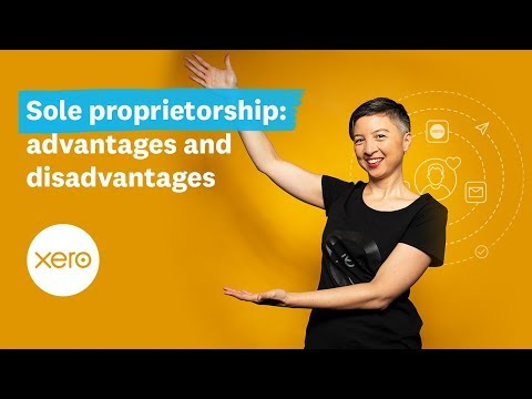 Advantages And Disadvantages Of Sole Proprietorship (US) | Small Business Guides | Xero