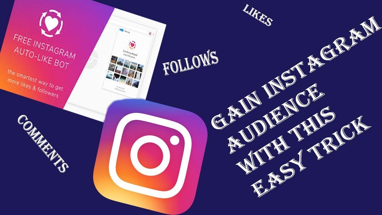 Gain Instagram Likes & Followers with Everliker