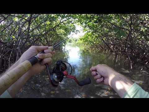 Exploring Jupiter Fishing
