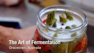 So many different ways to make fermented foods absolutely delicious! watch and see how... ready start your healthy lifestyle? get the book that inspired m...