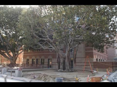 Designing USC's Ronald Tutor Campus Center