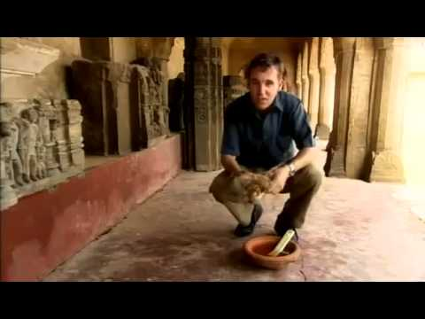 Ancient India's Contributions to the World (Full Documentary