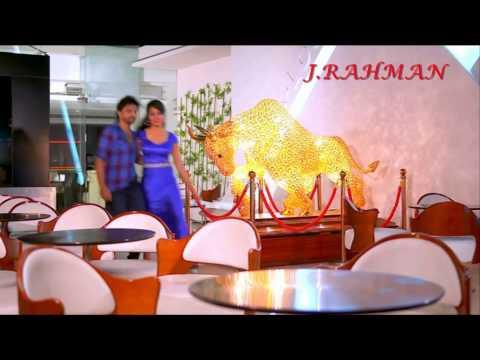 Dil Tu Hi Bataa - Krrish 3 - Video Song...
