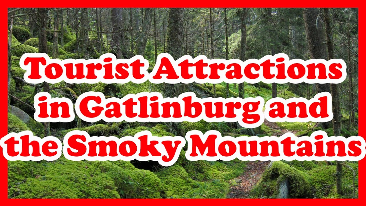 5 Top-Rated Tourist Attractions in Gatlinburg and the Smoky Mountains, Tennessee | US Travel Guide
