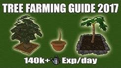 [Runescape 3] Complete Tree Farming Guide 2017 | 140k+ Farming exp/day | Full Tree Farming Route