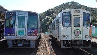 【乗車記】牟岐線2000系団体列車