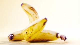 Si los Animales Fueran Frutas