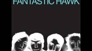 Play Fantastic Hawk