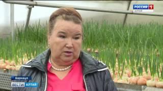 видео Кредиты для бизнеса в Барнауле