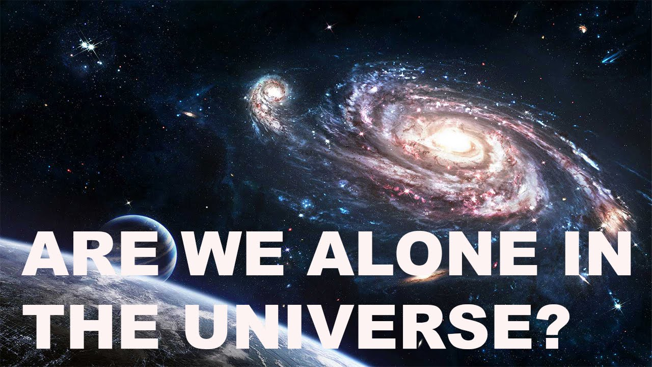i am the universe essay Who am i this essay sample features main points students should cover when answering such a difficult and personal question who am i at first glance, it's a simple looking question and seems equally simple to answer most often, i'll start answering this question by listing off things about myself.