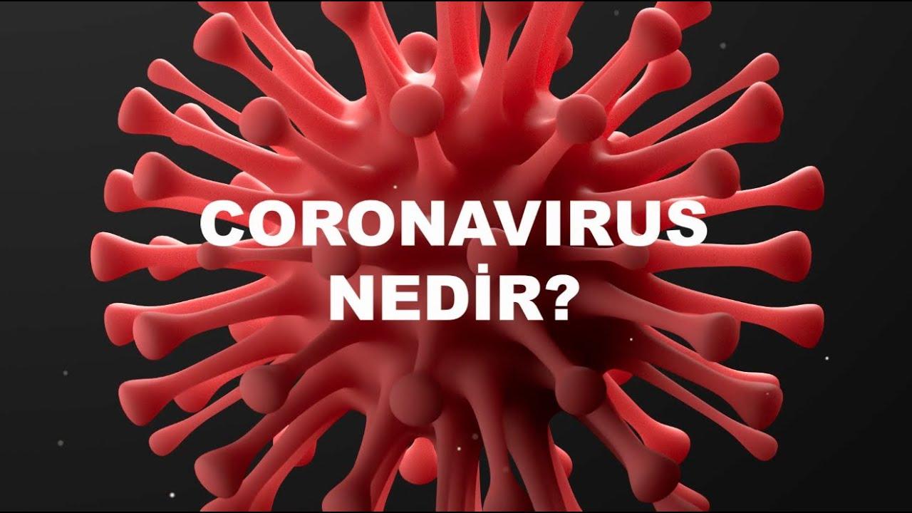 Corona Virüs Nedir? Corona Virüs Nasıl Bulaşır, Belirtileri ve Tedavisi Nasıldır?