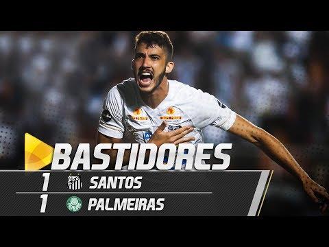 Santos 1 x 1 Palmeiras | BASTIDORES | Brasileirão (19/07/18)