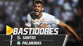 Santos 1 x 1 Palmeiras   BASTIDORES   Brasileirão (19/07/18) thumbnail